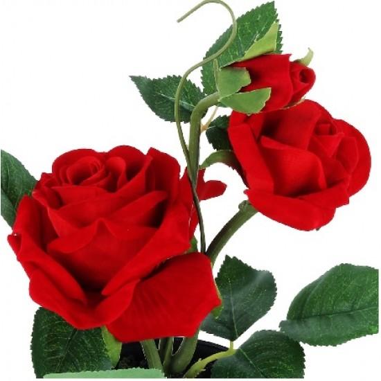 Love Romantic