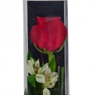 One Rose Box arrangement