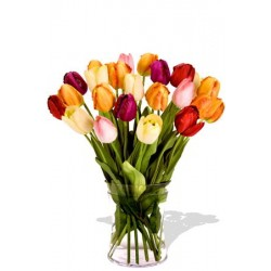 24 Mixed Tulips Bouquet
