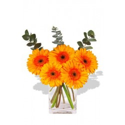 Small Gerbera Vase Bouquet
